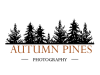 Autumn Pines Photography